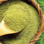 moringa-oleifera-destaque