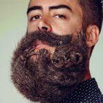 fazer a barba crescer